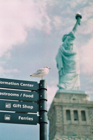 Gros plan statue de la liberté plus pigeon
